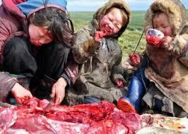 Eskimi jedu sirovo meso.