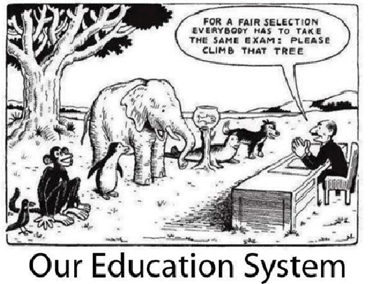 """""""Svako je genijalac. Međutim ako prosuđuješ ribu na temelju njene sposobnosti da se penje na drvo, onda ćeš cijeli život provesti u uvjerenju da je glupa."""" - Albert Einstein"""