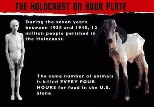 HOLOKAUST NA VAŠEM TANJURU Tijekom sedam godina, između 1938. i 1945. godine, 12 milijuna ljudi je stradalo u holokaustu. Isti broj životinja u SAD-u ljudi ubiju svaka četiri sata za hranu.