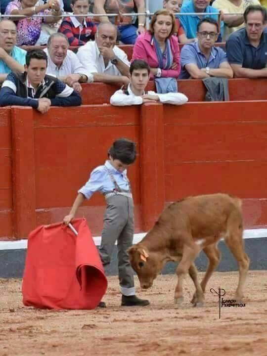 Ovako uče djecu okrutnosti prema ostalim životinjama u koridi, a možda će uskoro tako biti i kod nas u Hrvatskoj?