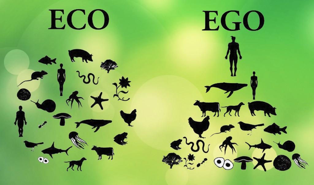 Nehijerarhijski krug međusobno ovisne mreže života koja čini složene, ali krhke ekosustave, nasuprot neprirodne tvrde hijerarhijske piramide nusproizvoda nesvijesti i sebičnosti.