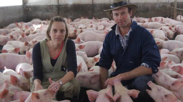 Robovlasnici ogromne farme svinja: Edwin i Michael Beveridge