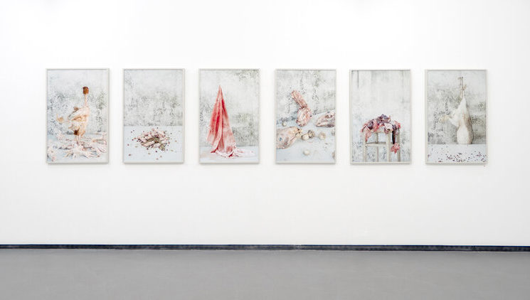 Michael Michlmayr: Galerija svjetlopisa Beč, rujan 2019. godine / RITUALI I - Korelacije